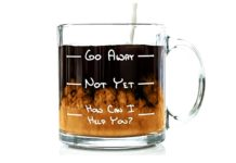 Got Me Tipsy Go Away Funny Coffee Mug - Birthday Gift Idea for Him or Her, Mother's Day Gift for Mom and Father's Day Gift for Dad - 13-Ounce, Glass