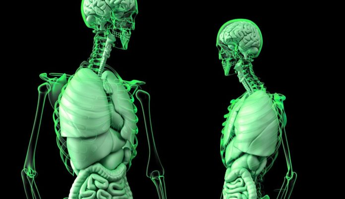 DNA Hackers to Rewire Human Brain; More Mutants to Appear on Earth?