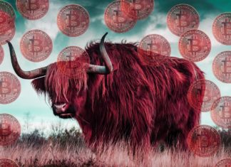 Cryptocurrency Will Demolish USD, EUR, and Other Fiat Money in 4 Years