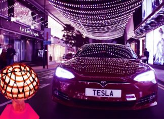 Tesla Mushroom mushrooms Batteries
