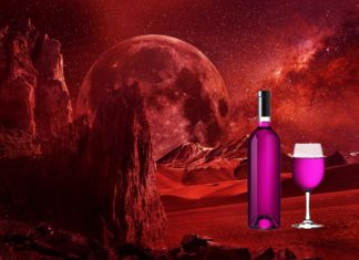 Here Is How First Humans Will Grow Wine on Mars